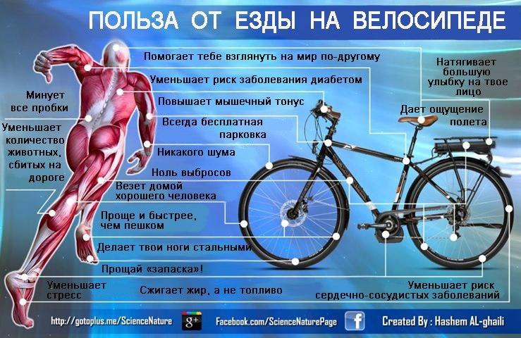 Как правильно ездить на велосипеде что бы похудеть